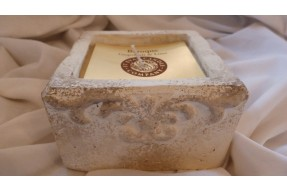 Baroque Stone Square Pot - Grapefruit & Lime