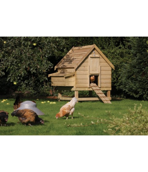 Chicken Coop - Large